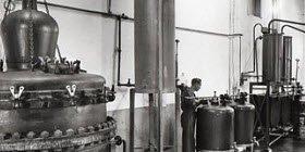 Maraschino liqueur: Luxardo factory, Zara, distillery (crt-01)