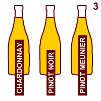 Champagne wine: Base wines for Champagne.