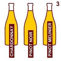 Champagne: I vini base dello Champagne.