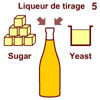 Champagne wine: The second fermentation.