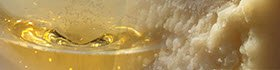Champagne wine: Champagne and Parmigiano.