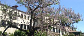 Vino Friularo: Villa Borletti Widmann, Bagnoli.