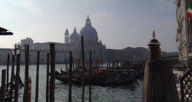 Harry's Bar: Basilica della Salute, Venezia.
