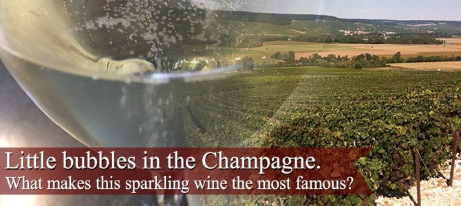 Champagne wine: Little bubbles in the Champagne.