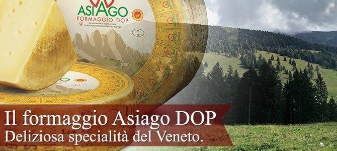 Il formaggio Asiago, deliziosa specialità del Veneto (crt-01)