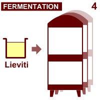 Prosecco wine: The 'fermentation'.