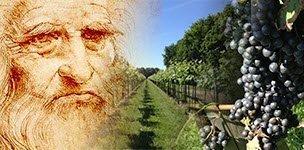 Leonardo da Vinci and wine (img-02)