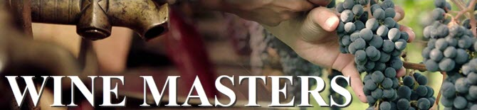 Wine Masters – Serie review (img-10)