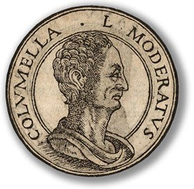 Lucius Juinius Moderatus Columella (img-01)