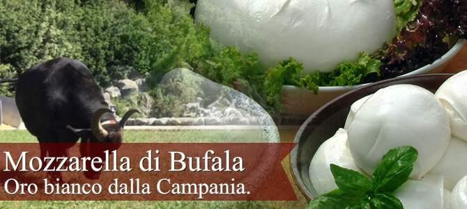 Mozzarella di Bufala, oro bianco dalla Campania (crt-01)
