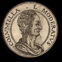Balsamic Vinegar: Lucius Junius Moderatus Columella (img-01)