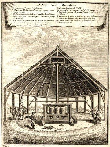 Frittelle veneziane: Mulino dello zucchero (img-09)