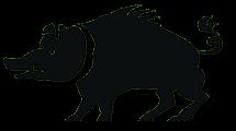 Culatello di Zibello: il maiale del Culatello di Zibello (crt-01)