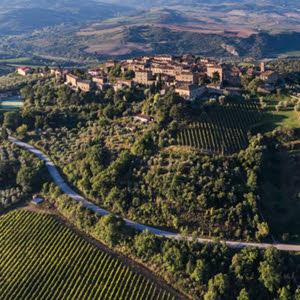 Brunello di Montalcino: le vigne e l'uva del Brunello (crt-01